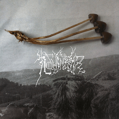 The album-cover to TOVANSKÏ & Martin Massiv - ILDVINTER - Three mushrooms joined at the root over a black and white rural mountain landscape.